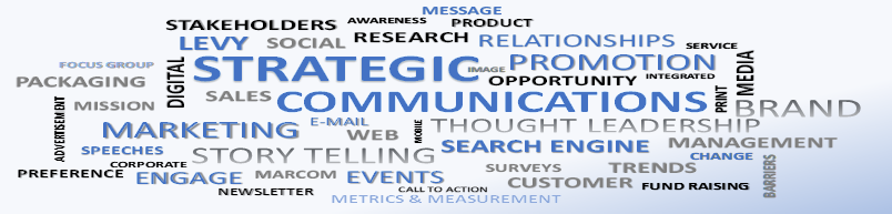 Levy Strategic Communications